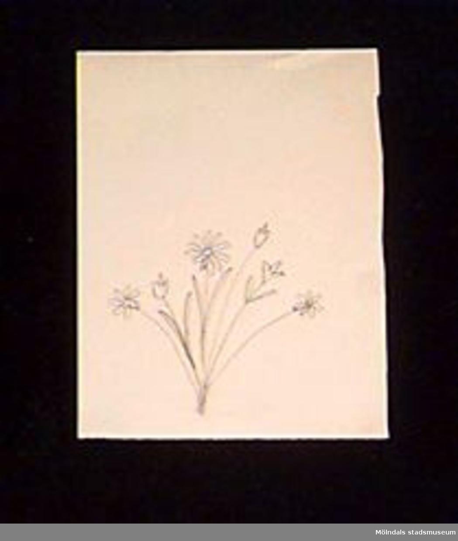 En blyertsteckning där motivet föreställer en blombukett. Givaren gick hela sin skoltid i Toltorpsskolan.