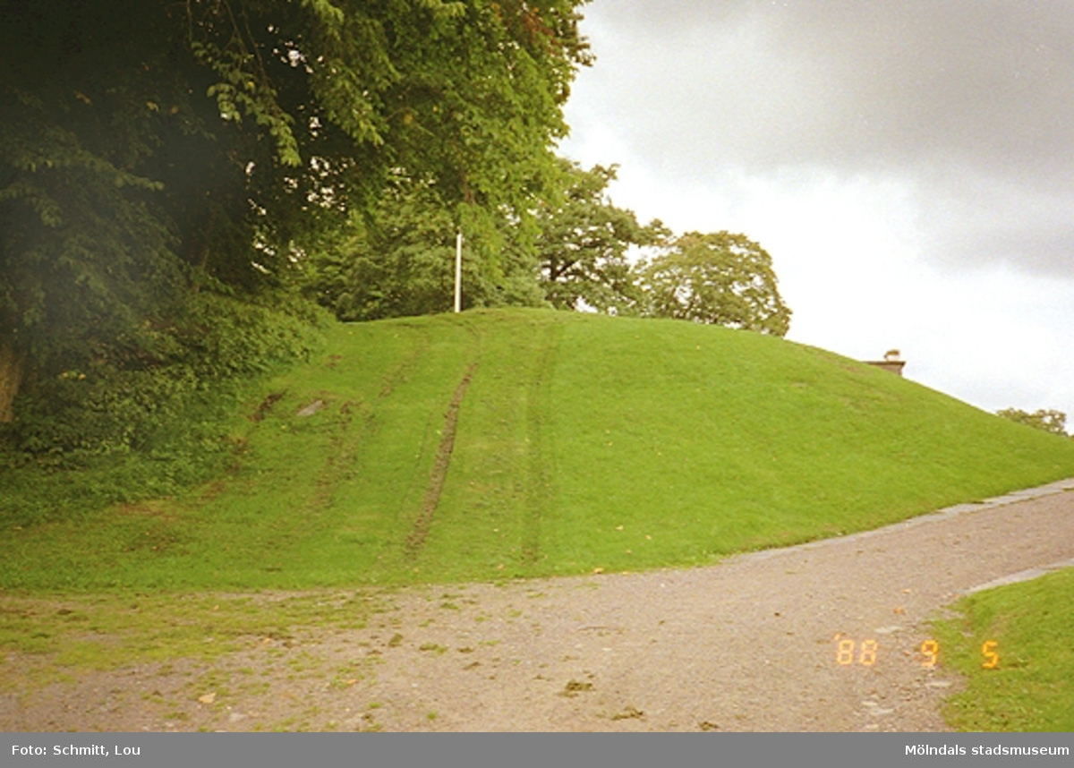 Gunnebo slottspark med hjulspår i gräsmattan.