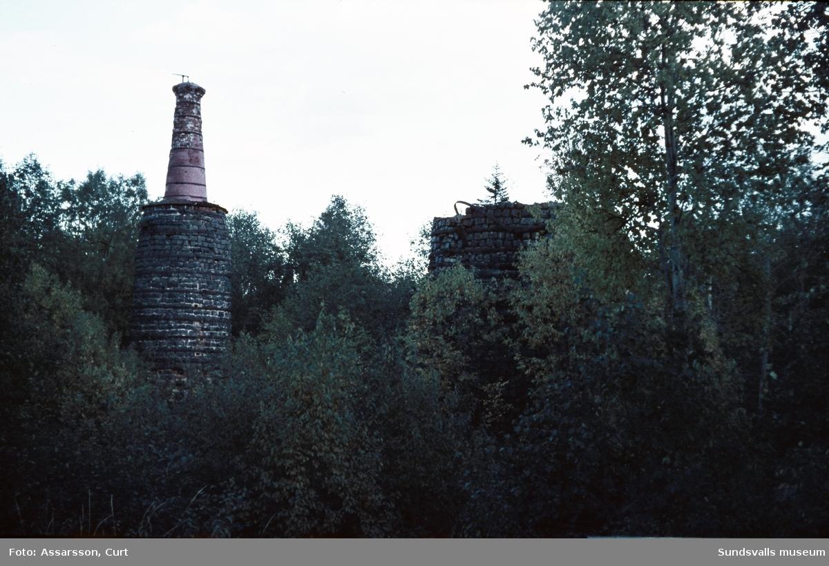 Ruinen av masugnen i Lögdö.