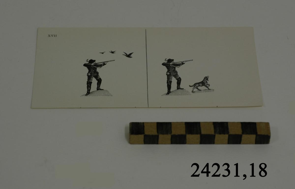 Rektangulärt vitt pappersark numrerat XVII i övre vänstra hörnet. På arket syns två stycken olika bilder i svartvitt, en för vardera öga. Till vänster: Jägare som siktar mot tre stycken flygande fåglar. Till höger: Samma siktande  jägare i sällskap med hund. Fåglarna i denna bild saknas.