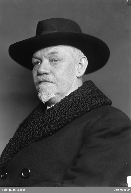 portrett, mann, kunsthistoriker, museumsdirektør, brystbilde, hatt
