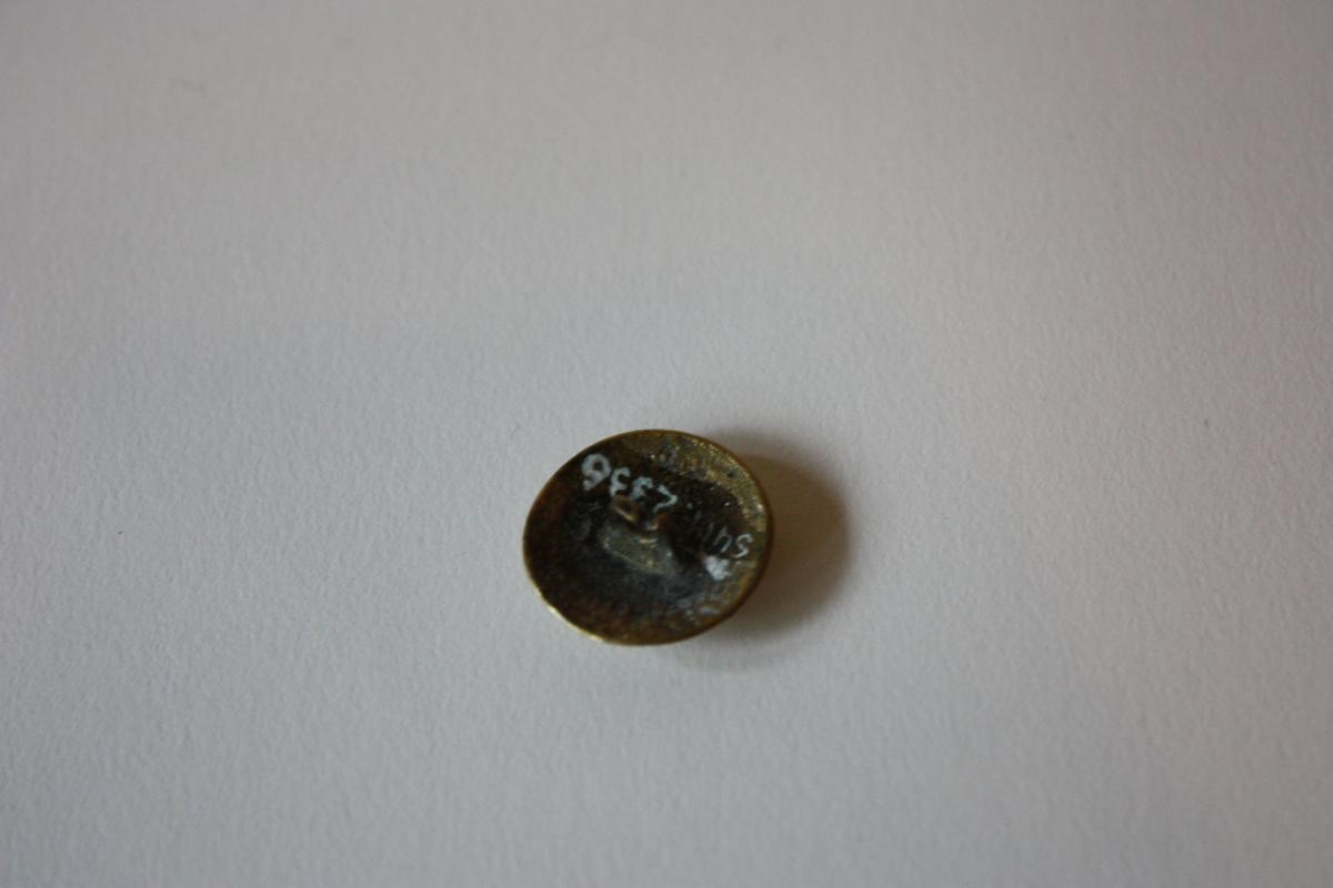 Knapp med lett boga profil, hempe på undersida. Dekor på oversida: Kongekrune i ein sirkel, rundt denne sju graverte stjernespissar.