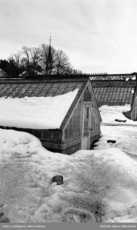 Villa Ekheim, vinter, snø, eksteriør, drivhus,