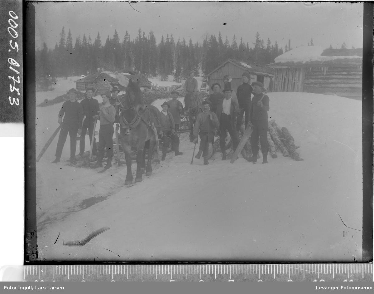 Gruppebilde av tolv skogsarbeidere med hester.