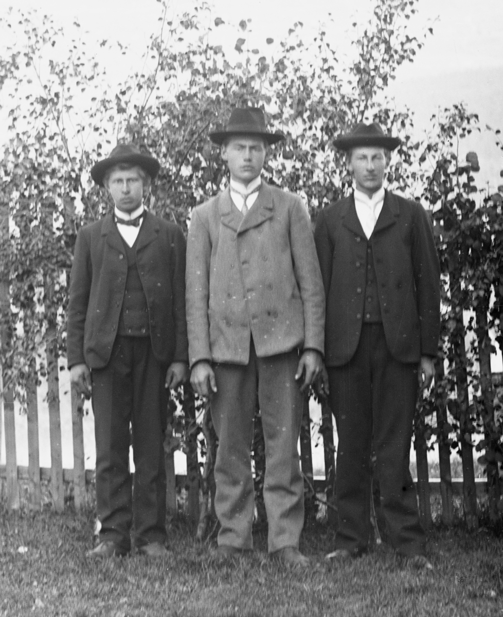 Tre dresskledde menn i helfigur, stående foran stakittgjerde og bjørkekvister