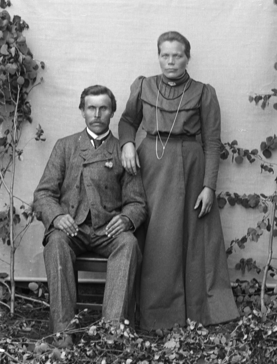 Sittende mann og stående kvinne, bjørkekvister og lerretbakgrunn