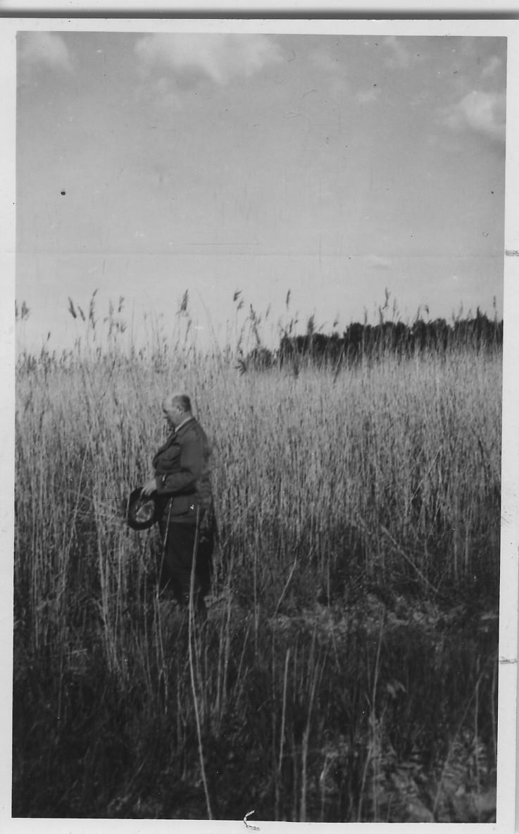 'Biologiska Föreningens utfärd till Oset och Kvismaren: ::  :: 1 man ståendes i vass. Fotograferad från avstånd. ::  :: Ingår i serie med fotonr. 4386:1-18.'