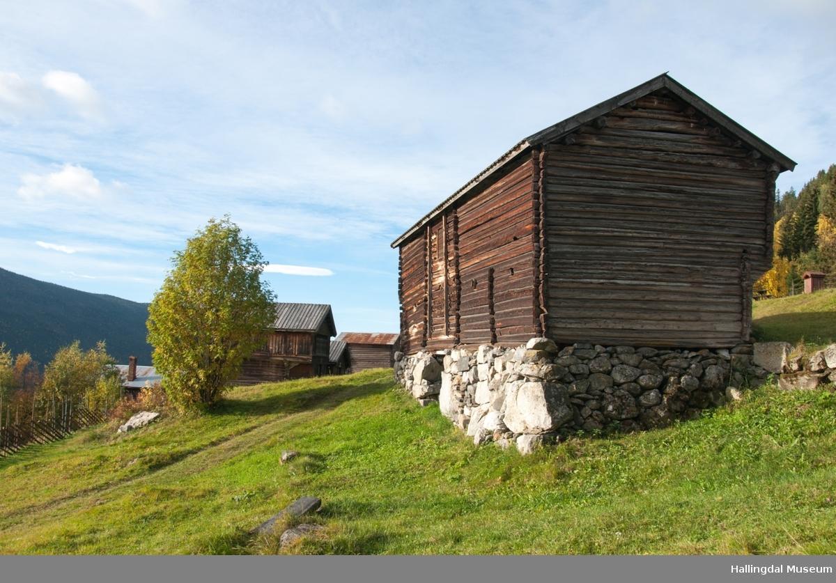 Dette er en stall med trev.  Den er sammensatt av flere tømmerhus som trolig er bygd en gang mellom 1825 og 1850 her på Skaga.  Annen etasje er utkraget og den har bordtak.
