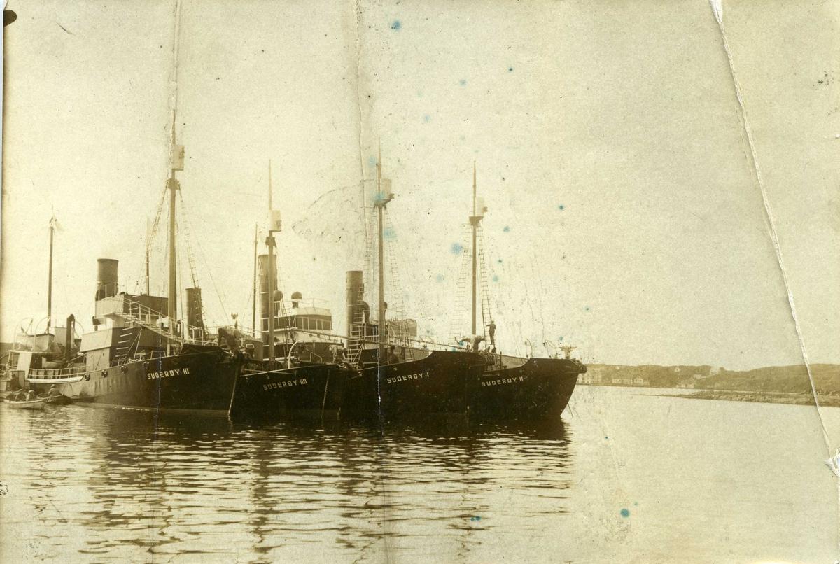 Hvalfangst - Dampskip - Motorskip