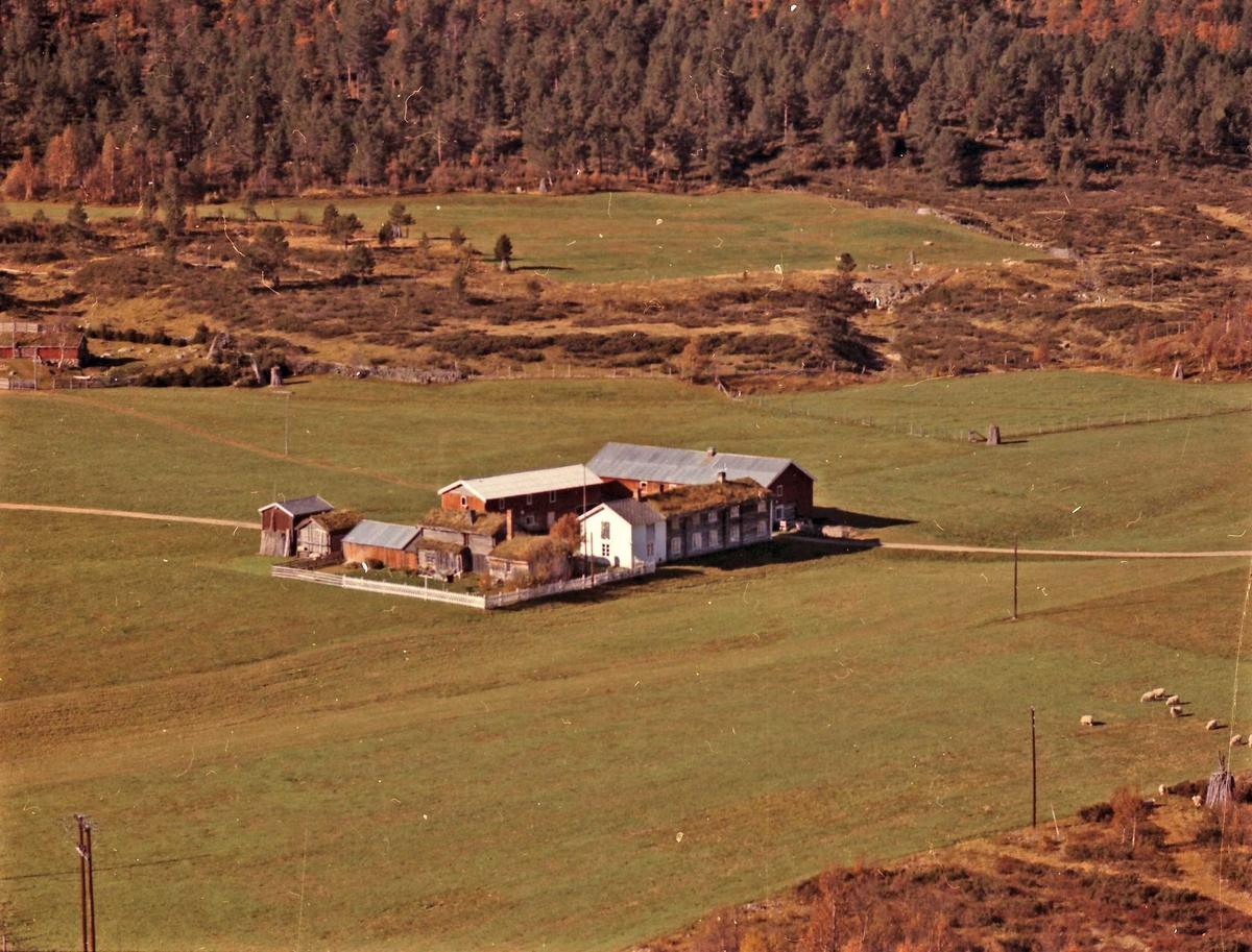 Gårdsbruk (Ryen vestre).