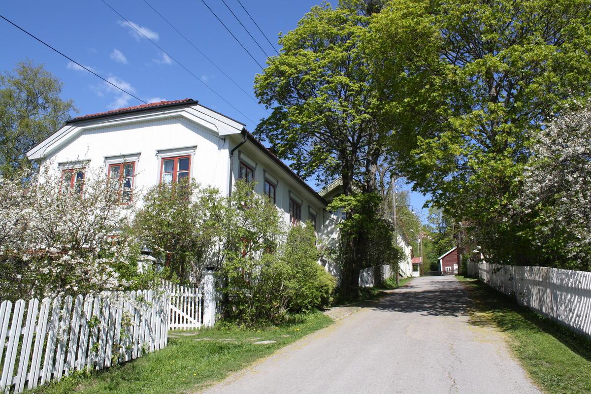 Hus og hager i Storgata, Øvrebyen, i vårblomstring