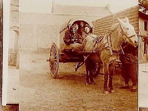 Bilder från Kina, häst spänd för tvåhjulig kärra.Missionär Maria Nylin, Ekersgatan 15, Örebro.