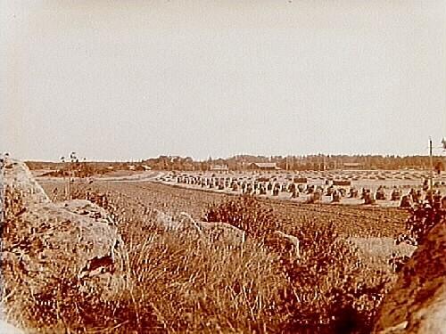 Parti av Svia by, Svearnas by.(Svia är troligen den by där svearna bott före deras egentliga stadsbildning.)