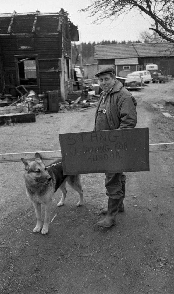 Folkilskna schäfrar, Bohlins musik, Lustmord 19 november 1966