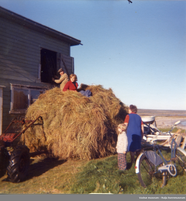 Tre generasjoner Bauna med høylass som skal inn på høyloftet. Arnulf ved luka, Sylvia på høylasset. Gudrun og Sylvias eldste datter Elin er tilskuere. Skallelv, ca. 1978.