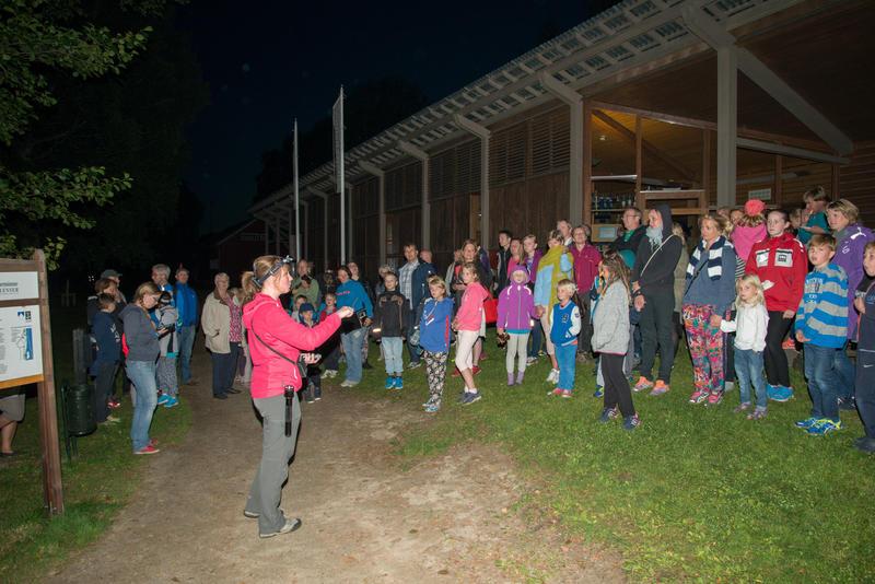 Foto av publikum som hører etter flaggermus. Foto/Photo