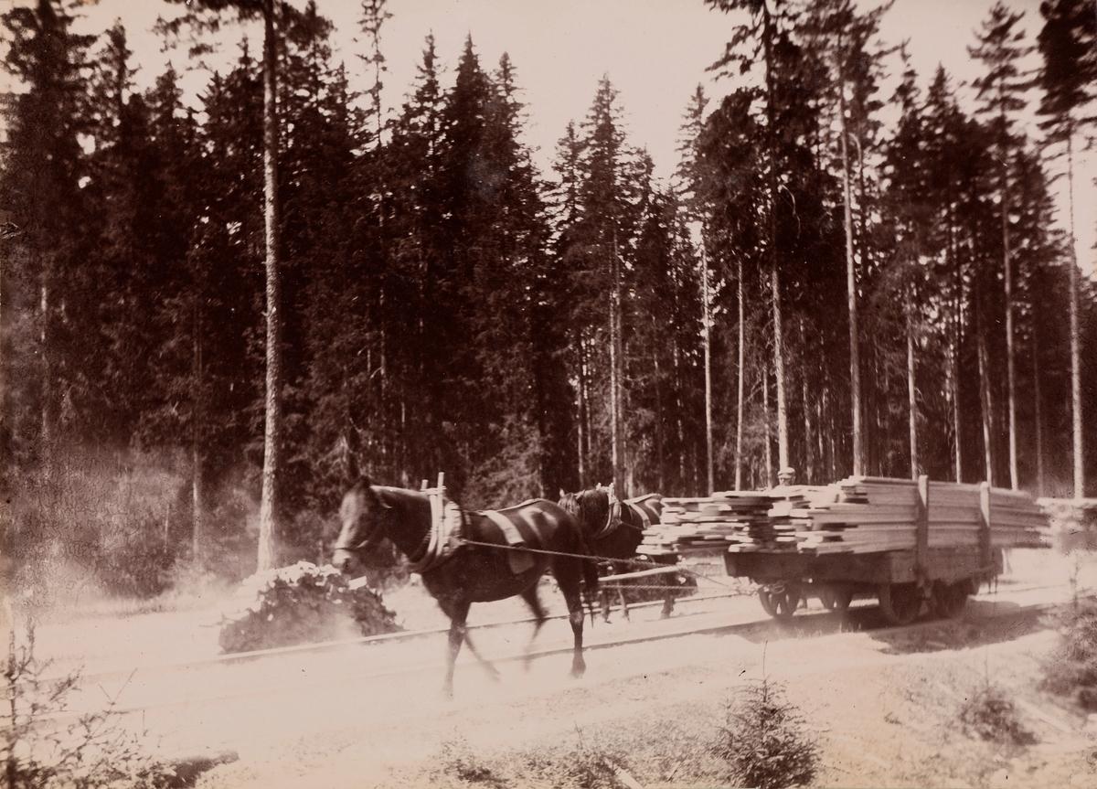 """""""Berger og Hurdalssjøen"""" Skogsarbeid med hest som drar på vogner med tømmer som kjører på skinner."""