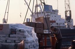 Forsyningene kontrolleres før de lastes ombord i M/S 'Vikara