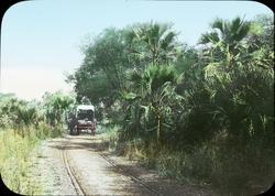 Kolorerad ljusbild med motiv av ekipage på väg i djungeln.