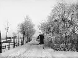 Diapostiv, fönsterbild av vinterlandskap, snötäckt landsväg.