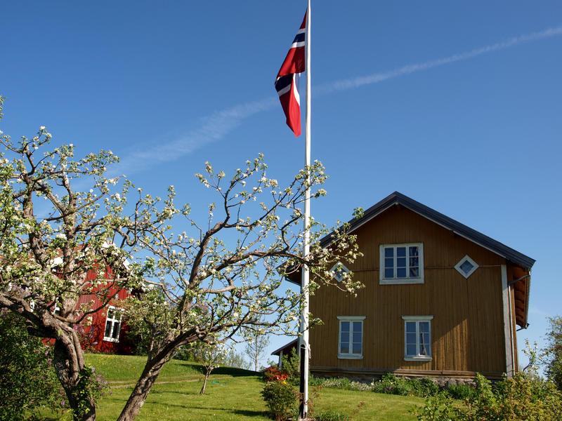 Eidskog_bygdetun_Almenninga.JPG