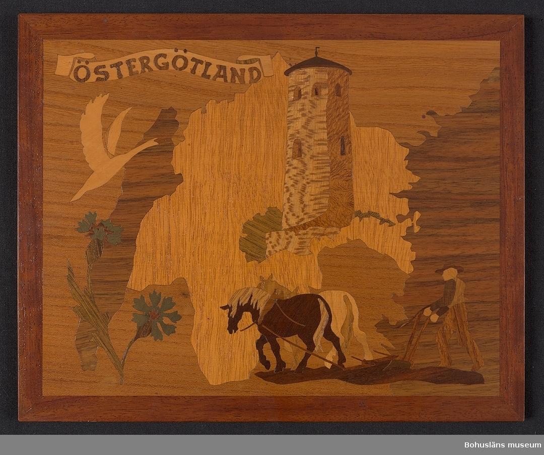 Landskapstavla med namnet ÖSTERGÖTLAND på böljande namnband med karta och ikoniska motiv typiska för landskapet inlagda i intarsiateknik av fanér i olika ljusa och mörka träslag. Några mindre bitar är infärgade i från början blått, men som blivit grönt. Lackad.  Motiven avbildar blommande blåklint, Stegeborgs slottsruin, knölsvan och en bonde som plöjer efter nordsvensk häst.  Intarsian är skuren så att träets naturliga mönster skickligt medverkar till och understryker motivens former och volymer. Saknar beskrivande etikett av papper på baksidan. På baksidan en upphängning.