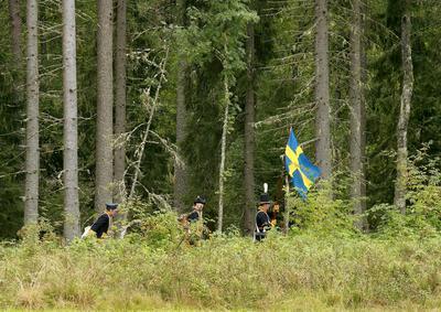 Svensker i skogbrynet