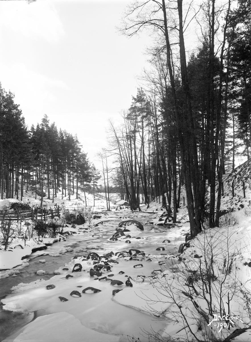 Tinnerbäcken i vinterskrud. Motiv som rimligtvis tagits som inspiration och förlaga till hans måleri.