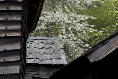 Detalj av bygninger fra Hordaland (Foto/Photo)