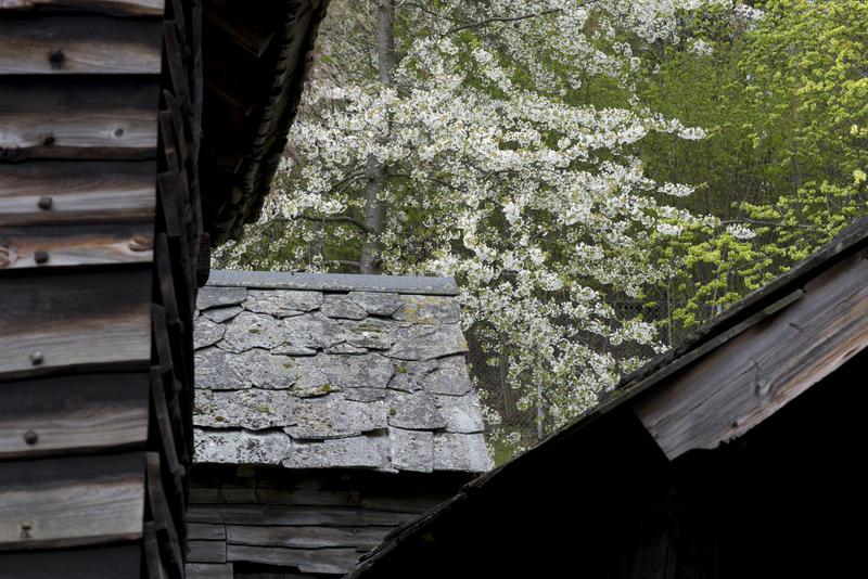 Detalj av bygninger fra Hordaland