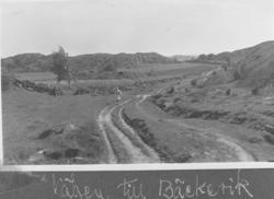 Vägen mellan Both och Bäckevik på Lyrön