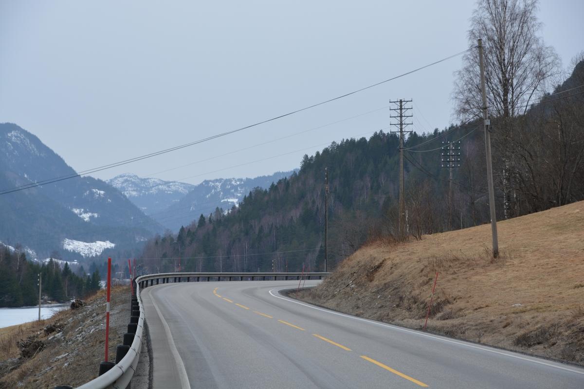 120 stolper langs Europavei 134 mellom Notodden og Hjartdal. Linjemateriellet stammer fra perioden 1900-1921. En tredjedel av stolpene er fra før 1920, en tredjedel fra 1920-30-årene og resten av nyere dato. Strekningen Notodden - Hjartdal er den eldste bevarte linjekursen i Norge. Linjen er pr. 01.01.2017 i god forfatning etter omfattende restaurering i 2015 og 2016. Linjekursen ble fredet i 1996.
