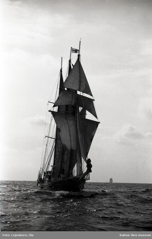 Skonaren Sir Winston Churchill  The Tall Ships' Races är en internationell havskappsegling för segelfartyg och stora segelbåtar som har arrangerats sedan 1956. Kappseglingen arrangeras av Sail Training International.  I tävlingen deltar skolfartyg, scoutbåtar och privata skutor och båtar från många olika länder; tävlingen i sig är inte det viktiga utan ungdomsarbetet. Ett av prisen är för gott kamratskap. Förutsättning för att få delta i seglingen är att minst 50 % av besättningen består av ungdomar mellan 15 och 25 år. Nederländska briggen Mercedes i Antwerpen under tävlingarna 2006  Villkoret för att få deltaga är att fartyget är över 30 fot i vattenlinjen och att minst halva besättningen består av s k trainees i åldern 16 till 25 år.  Klassindelningen är: A-klass, över 160 fot (48,8 m) B-klass, 160 - 100 fot (48,8 - 30,5 m) C-klass, 100 - 30 fot (30,5 - 9,14 m)   Mellan 1973 och 2003 var tävlingens officiella namn The Cutty Sark Tall Ships' Races, då huvudsponsorn var Cutty Sark whisky. Från år 2004 var huvudsponsorn Antwerpen (hamnen, staden och provinsen), och 2010-2014 är Szczecin huvudsponsor.  1988 hölls Tall Ships´ race i Karlskrona.  98 fartyg kom till Karlskrona i samband med starten av Cutty Sark Tall Ships' Race. Samtidigt besöktes Karlskrona av * Vega international drygt 100 fartyg * Kungliga Motorbåtsklubben drygt 15 stora motorbåtar * SM i brädsegling ca 200 deltagare