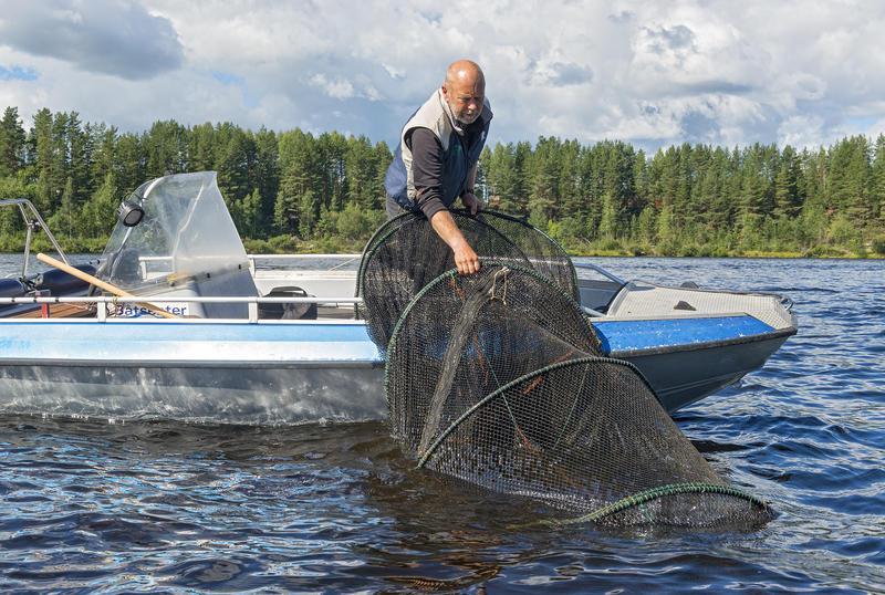 Opptak av fisk fra storruse med Jon Løyland under De nordiske jakt- og fiskedager 2016. (Foto/Photo)