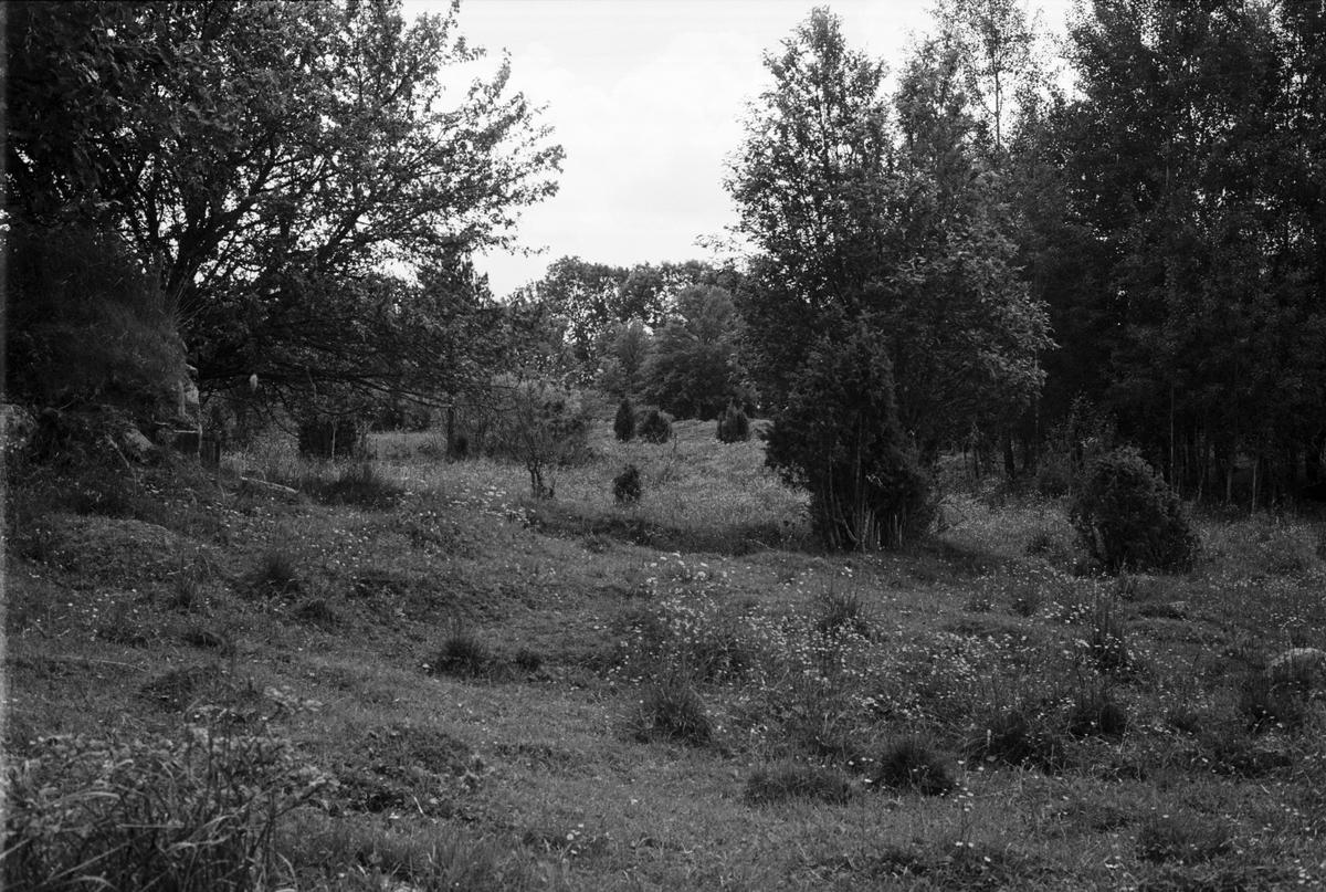 Beteshage och gravfält, Saringe 2:23, Tuna socken, Uppland 1987