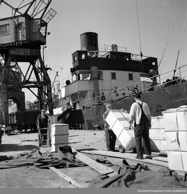 Oslo Havn: Grønlia.Mai 1950