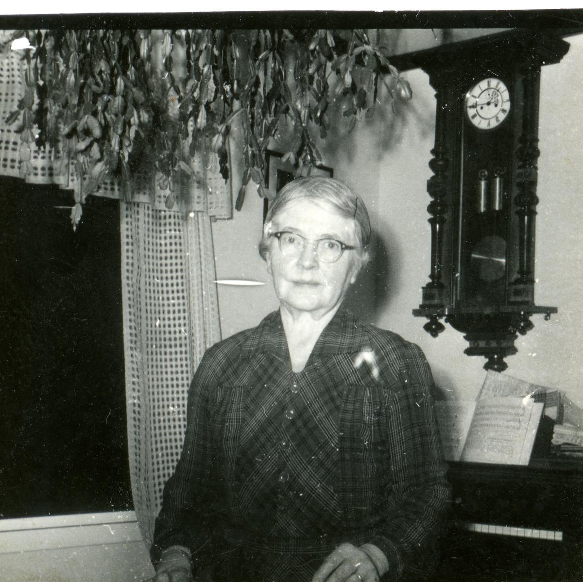 Portrett av Kristine Klemmetsrud i hennes hjem.