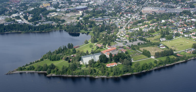 Flyfoto som viser Domkirkeodden der den stikker ut i Mjøsa med sine bygninger