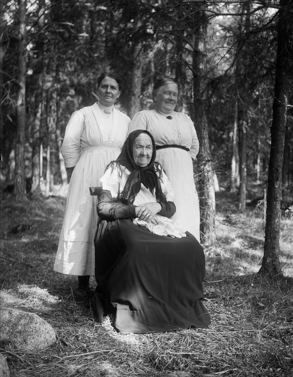 """""""Mor Lindvall, Johanna Karlstrand och Tilda Lindvall"""", i skogsbacke vid Billerstena, Altuna socken, Uppland 1920"""