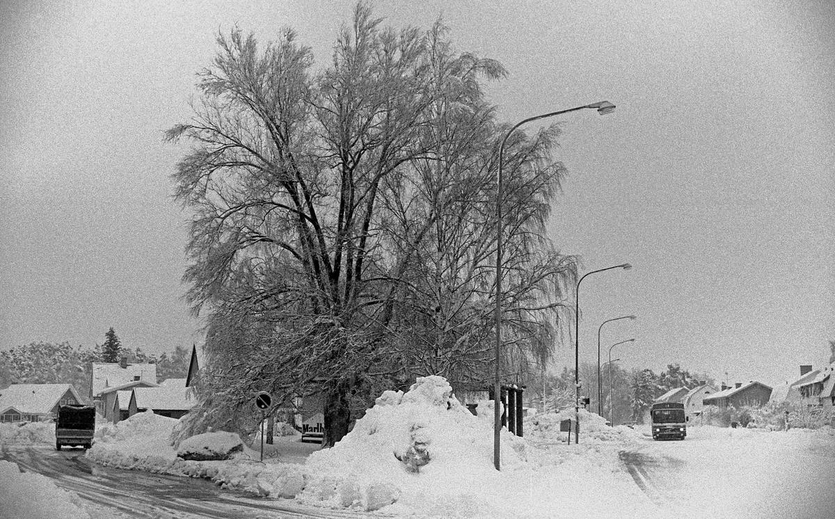 Lennart Wängestam och en kamera i 1980-talets Karlstad. Bilderna visas kronologiskt mellan 1980 och 1986. Kommentar från en användare: Ser ut som korsningen mellan Lagmansgatan och Alstersgatan, bussen kommer från Kroppkärrshållet.