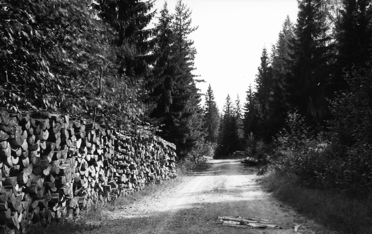 Gamla Norrlandsvägen vid Röstbo.