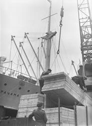 Lastning av Johnsonlinjens M/S Panama  i Göteborgs hamn. (Tr