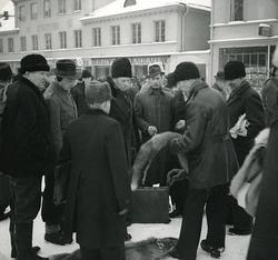 Foto från skinnmarknad i Växjö, troligen i samband med Sigfr