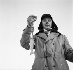 """Vardens arkiv. """"Pilking på Møsvann"""" 07.01.1954"""