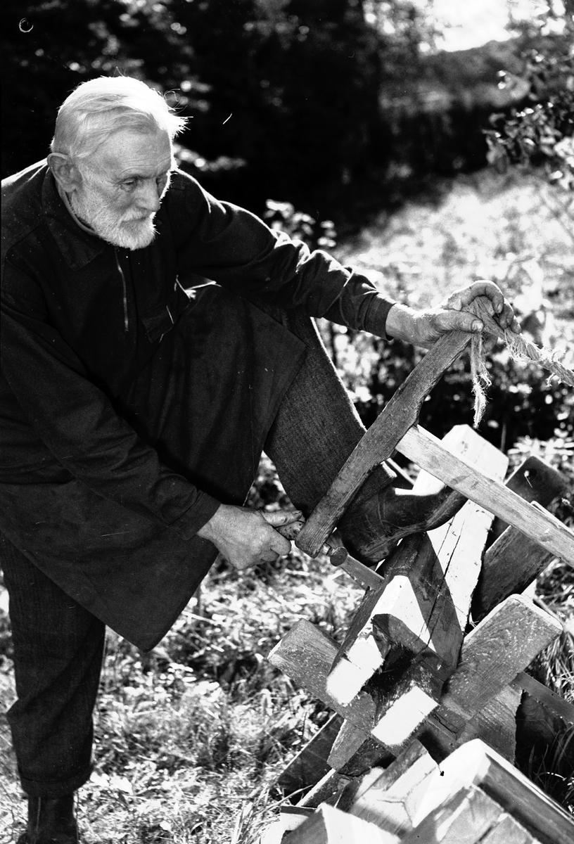 J. Andersson sågar ved. Reportage för Arbetarbladet. Den 23 september 1949