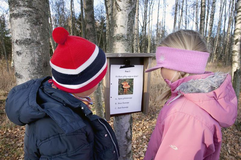 Foto av to barn som løser et natursti spørsmål (Foto/Photo)