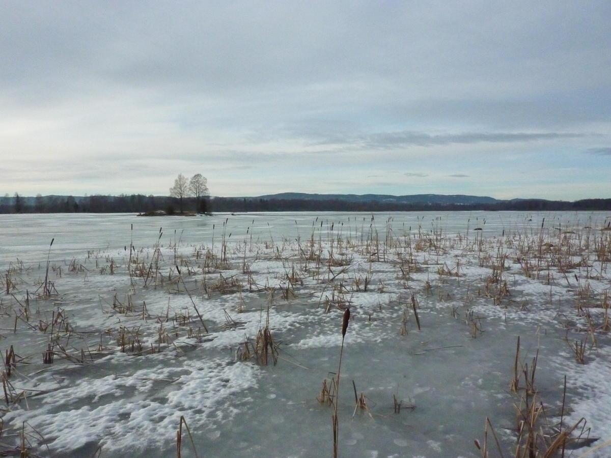 Foto av vinterstemning i Monsrudvika