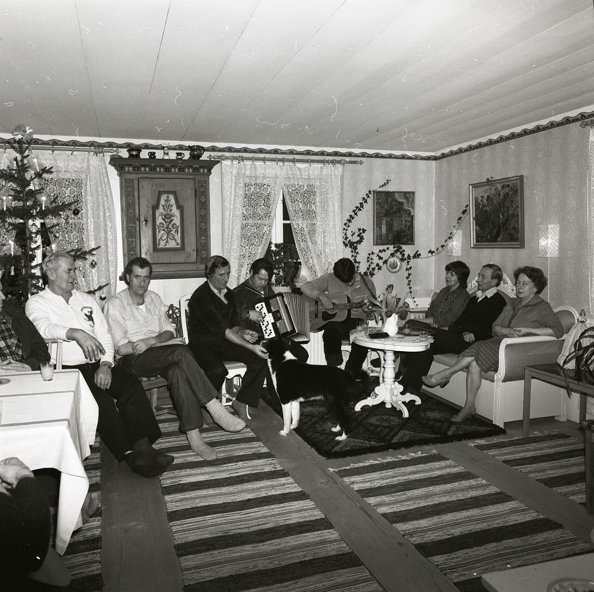 Längs väggarna sitter män och kvinnor uppradade i soffor och stolar för att lyssna till musik. De musicerande har tagit upp instrumenten och spelar koncentrerat. Hela sällskapet inklusive hunden har samlats i sällskapsrummet där julgran, mattor och gardiner pryder gemaket.