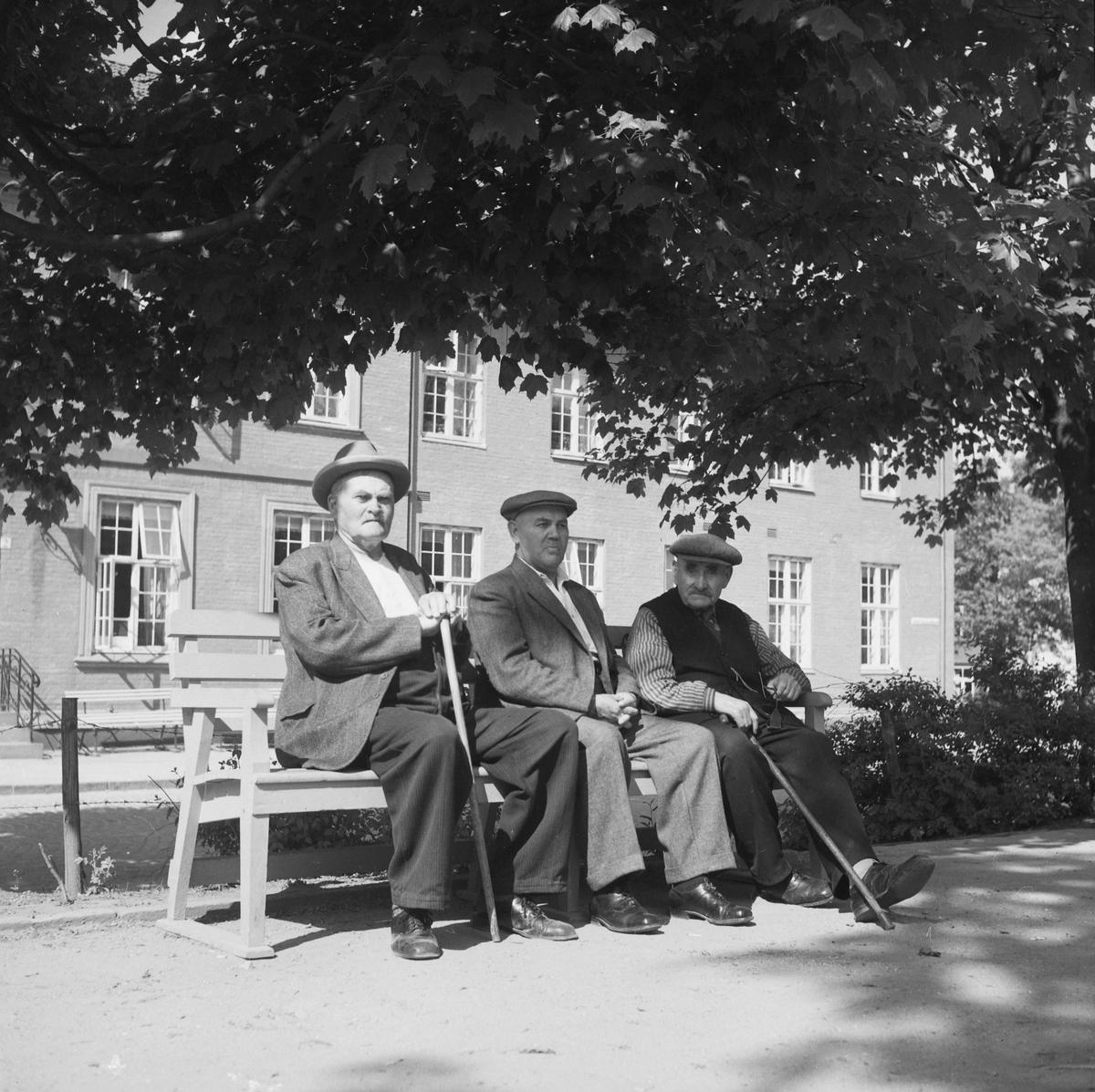 Eldre menn i parken ved Hospitalet