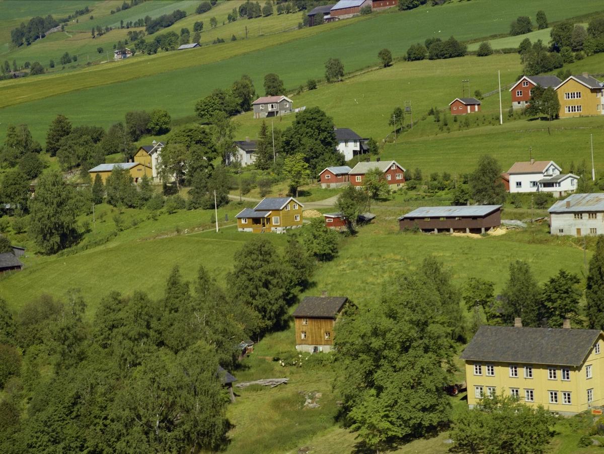 Kulturlandskap. Gårdsbruk og småhusbebyggelse. Lauvskog..